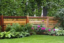 Porch & Front Garden