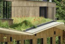 ARCHITECTURE. GREEN ROOF