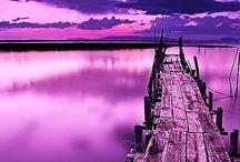 Violet or purple fav colour