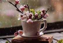 slow life jours de pluie