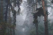 skog?