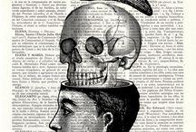 Vanitas / Life and Death
