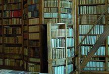 Bookshelves / by Vanessa Senyk