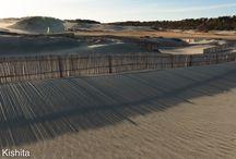 nakatajima sand dunes 中田島砂丘