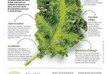 Gemüse Legumes