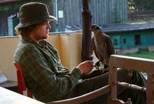 ANIMALS: Falconry & Handsome Bird Men
