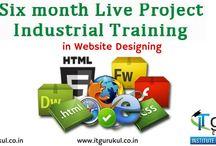 Web Designing Training Institute in India / web designing training program in Ludhiana