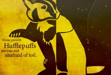 Potter Junkie / Huffleclaw: Hufflepuff heart heart and soul, with Ravenclaw brains and quirks.