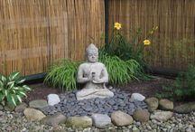My sacred garden