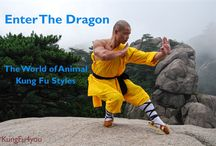 Learn Kung Fu / Articles about kung fu - it's history, philosophy and training methods.