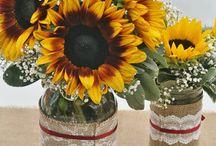 Elisha's Springtime Wedding / IT'S ON BITCHES