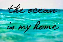 Word. / Words of inspiration, motivation, courage and love for the Ocean Minded soul. / by Ocean Minded