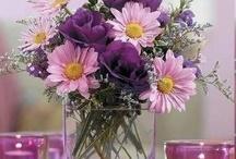 луговые и полевые цветы