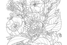 Coloring pages / by Barbara Neyman