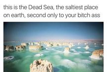 SALT / im worse than the Dead Sea, actually