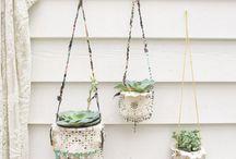 plants / little bundles of life
