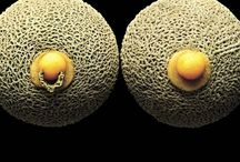 Food photography (Evolution)