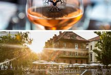 Slovenia Travel Inspiration