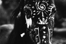 Horse Totem