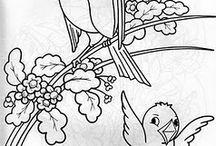 Pintura e Riscos de Pássaros
