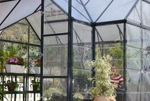 House // HH greenhouse dreams