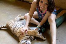 Tiger love  / Adorable tiger play / by Vivi Vanderkam
