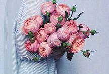 ИДЕИ цветы