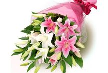 Buy Colourful Lilies Online and Send it to Anywhere in India / Flowecakesonline.com provides online flower bunches, flowers bouquets with different types of varieties for any occasions such as anniversaries and birthday, you can order online flowers bunches and sends flowers to India with a personal message.