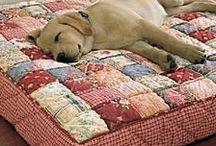 šití pes