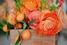 Orange flowers / What colour flowers speak to you?   This board has been put together as a useful resource for my 4-week online flower arranging course.  If you'd like to find out more about my #flowerstart workshops drop me a line at julie@juliedaviesflowerworkshops.co.uk
