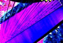 Purple & Pink / by Angela Moore