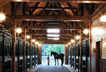 Horse Barns / DC Structures horse barn kits.