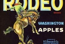 Horses in Advertising / by Susie Blackmon