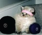 Keeping Fit :)