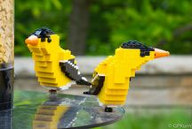 Lego Birds / Birds  made out of Legos