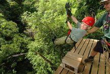 Abenteuer Pur! / Sie wollen Abenteuer erleben? Dann sind Sie in Costa Rica vollkommen richtig. Mit unseren Touren und Paketen wird ihnen garantiert nicht langweilig!