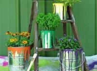 Viva o verde