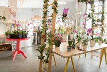 Flower Department / elemental wynwood's flower department