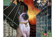 StarCats - Zodiac Collages with Cats