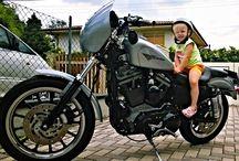 "Harley Davidson / Hot Rod Bike ""Chop Siesta"""