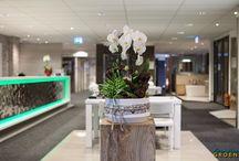 Balie Arrangement / Zakelijk en fleurig. Bloemstukken en boeketten die een zakelijke omgeving een groene touch meegeven.