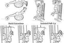 exercices dos