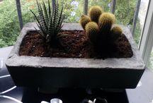 Macetas en piedra artificial hechas a mano / Macetas en piedra artificial hechas a mano Un detalle calido para casa o jardin-pvp12,50e http://artesaniasysiliconasnvg.blogspot.com.es/