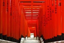 JAPAN / by Kathi White