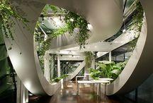 Beautiful Workplace