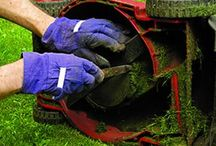 Lawn mover and grass care.