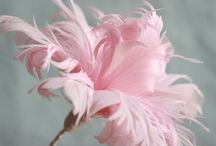Feathered Flowers