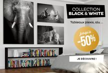 Collection Black & White / Déco animaux