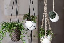 #plantas #macetas #decoracion #planter #jardin