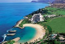 Hawaiian Holdiay!!